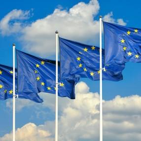 europese vlag_mzieglerraschdorf